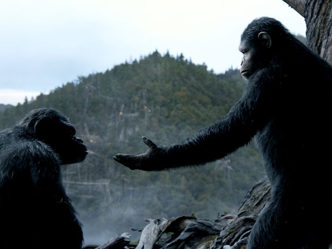 Dawn of the Planet of the Apes - Caesar and Mate